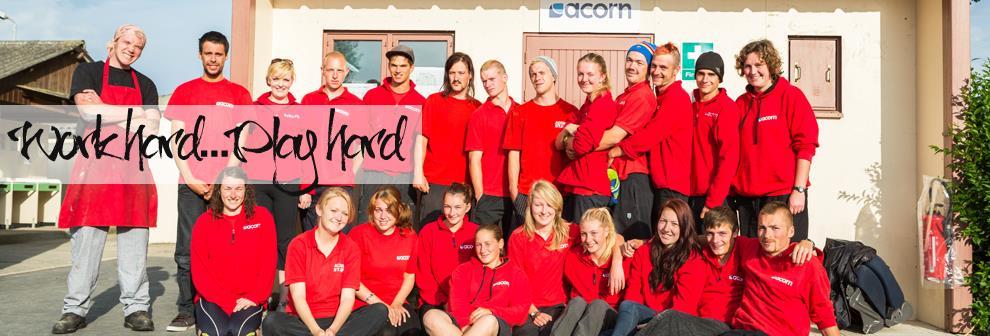 Cover Letter cover letters for job application : Acorn Adventure Seasonal Jobs